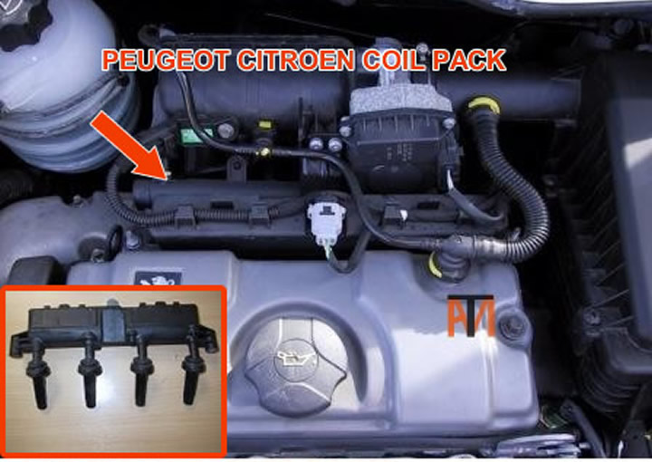 Peugeot Citroen coil pack citroen c3 fuse box diagram wiring diagrams for diy car repairs peugeot 207 water in fuse box at readyjetset.co